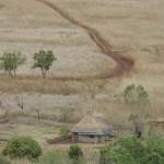 01CAMINATA DE NAAMACHA A UN POBLADO EN LA FRONTERA DE SWAZILANDIA (10)