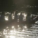 22 Prueba de agua y canoas