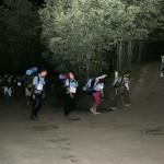 41 Marcha nocturna