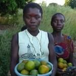 Vendedoras de mandarinas