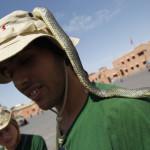 Tiempo libre en la medina de Marrakech