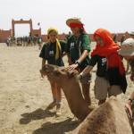 Mercado de camellos de Guelmin