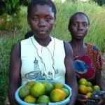 Venderoras-mandarinas1